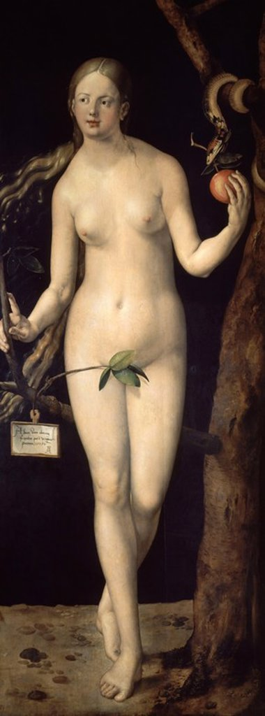 Stock Photo: 4409-5146 German school. Eve. Eva. 1507. Oil on panel (209 x 80 cm). Madrid, El Prado. Author: DURER, ALBRECHT. Location: MUSEO DEL PRADO-PINTURA, MADRID, SPAIN.