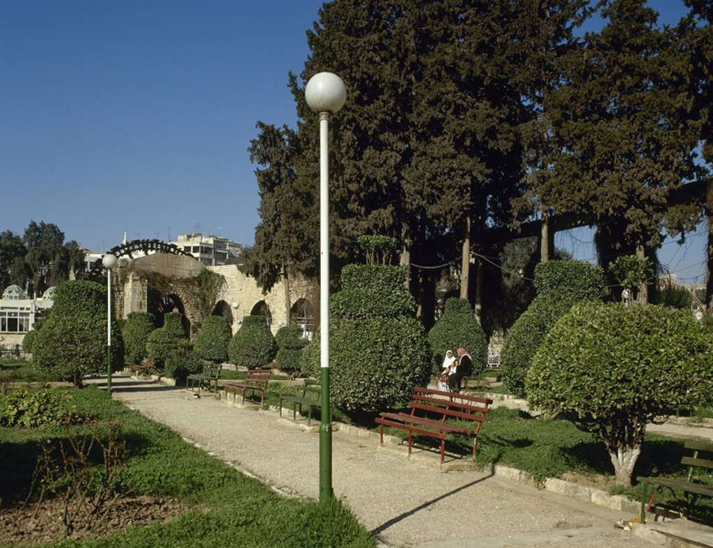 Syria. Hama. Gardens of the North of the city flanking the eastern bank of the Orontes River. In the background one noria. : Stock Photo
