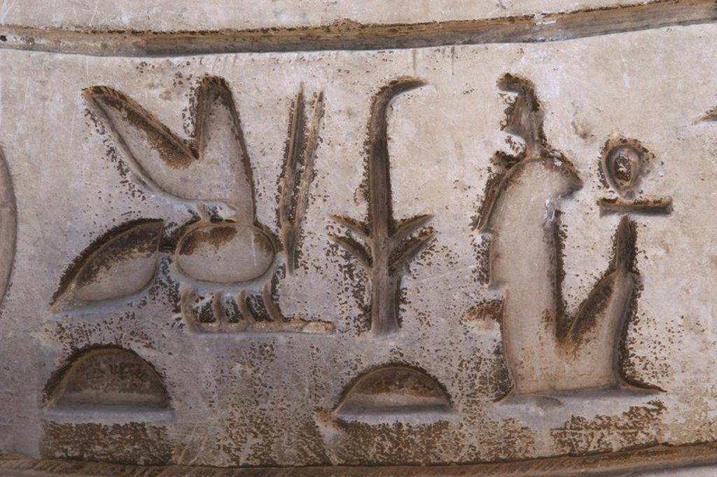 Stock Photo: 4409-60259 ESCRITURA JEROGLÍFICA. Detalle de escritura egipcia. Museo al Aire Libre (Mit Rahina). Menfis. Egipto.