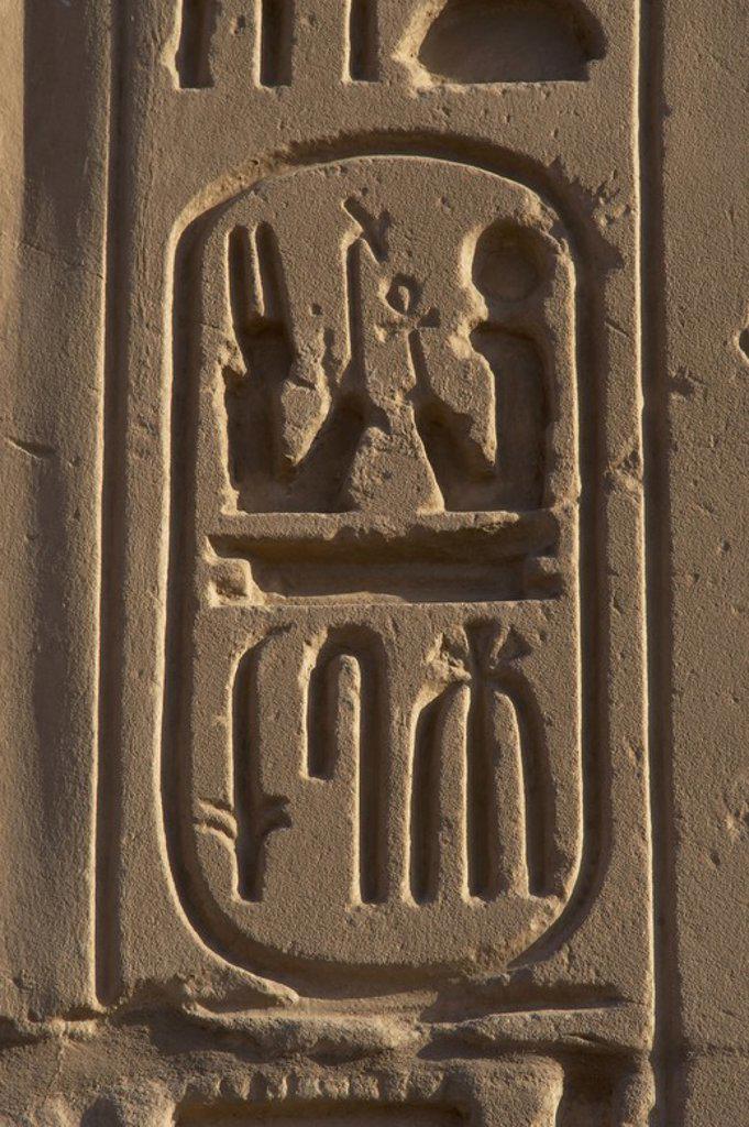 """Stock Photo: 4409-60718 ESCRITURA JEROGLIFICA. EGIPTO. PROTOCOLO REAL DE RAMSES II. Detalle de uno de los CARTUCHOS donde se escribía el conjunto de nombres o títulos que asumía el faraón en el momento de su ascensión al trono. Quinto nombre o título real del faraón: HIJO DE RA """"RA LE HA DADO LA VIDA"""". Ramses Miamon. DINASTIA XIX. (1320-1200 a. C.). IMPERIO NUEVO."""