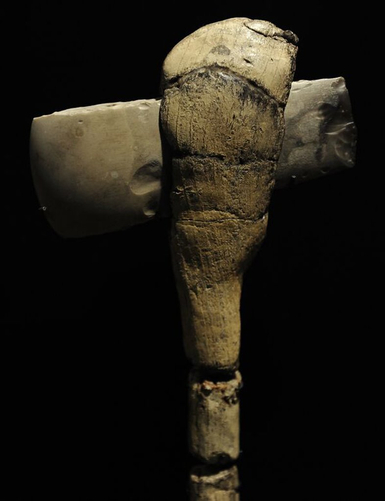 Stock Photo: 4409-72505 Flint axe on a helve of ash wood. 3100-3000 BC. From Sigerslev Mose, eastern Zealand. National Museum of Denmark. Copenhagen. Denmark.