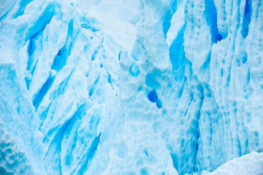 Blue ice and icebergs, Paradise Harbor, Antarctic Peninsula, Antarctica : Stock Photo