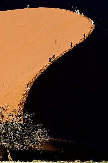 Stock Photo: 4410-1997 Tourists climbing giant sand dunes (Dune 45) at Sossusvlei, Namib Desert, Namibia