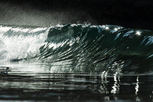 Stock Photo: 4411-4733 Wave Breaking With Sparkles In Silver Light,El Morro Bay, Laguna Beach, California, USA