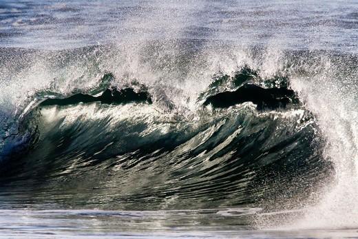 Big Wave Breaking In Gold Light,El Morro Bay, Laguna Beach, California, USA : Stock Photo