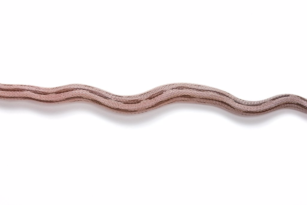 Red Corn Snake 'Black Striped Anerythristique' : Stock Photo