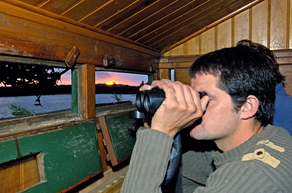 Birdwatching from a hunting shed Baie de Somme France : Stock Photo