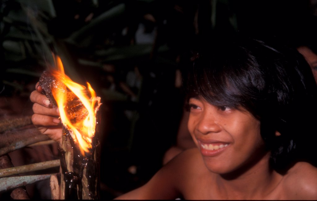 Stock Photo: 4413-130959 Boy burning resin from Damar tree Bukit Duabelas NP Sumatra