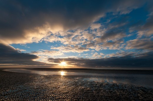 Dusk on the mussel-Quend Beach in the Somme : Stock Photo