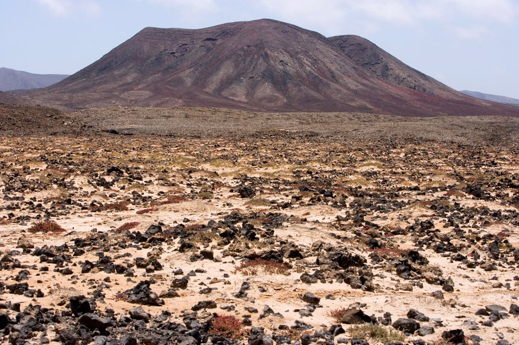 Arid landscape of the center of Fuerteventura Canary : Stock Photo