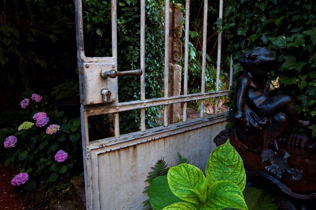 Bird bath and gate in a garden : Stock Photo