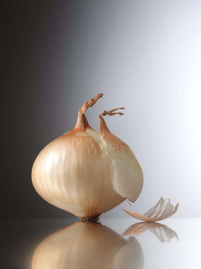 Stock Photo: 4413-192235 Onion in the studio