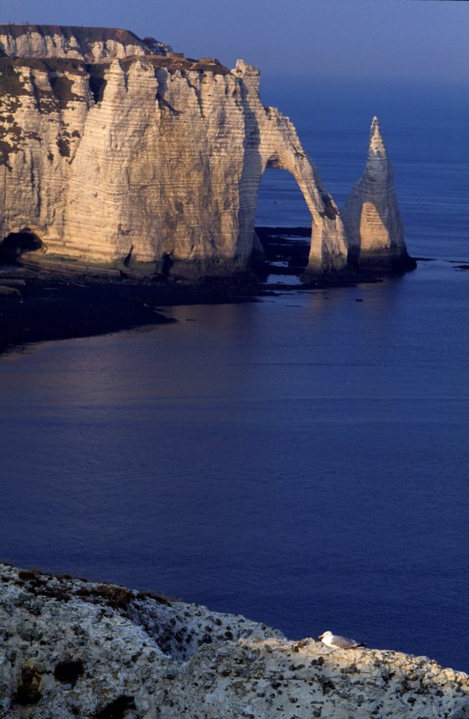Stock Photo: 4413-233795 The arch and the needle of the cliff downstream Etretat
