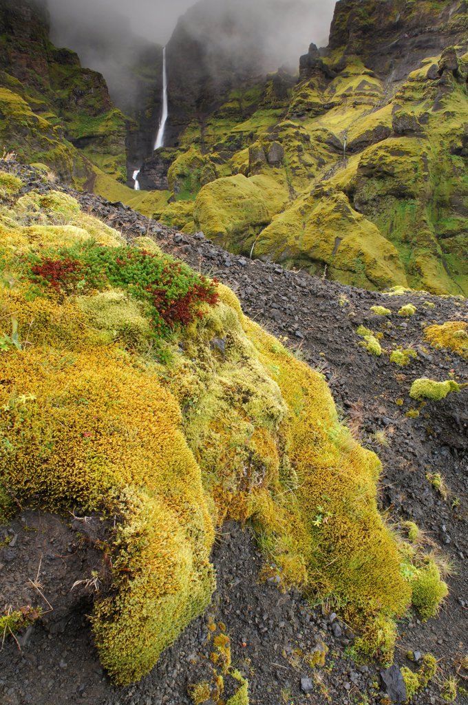 Stock Photo: 4413-24678 Waterfalls in a canyon with green moss Iceland