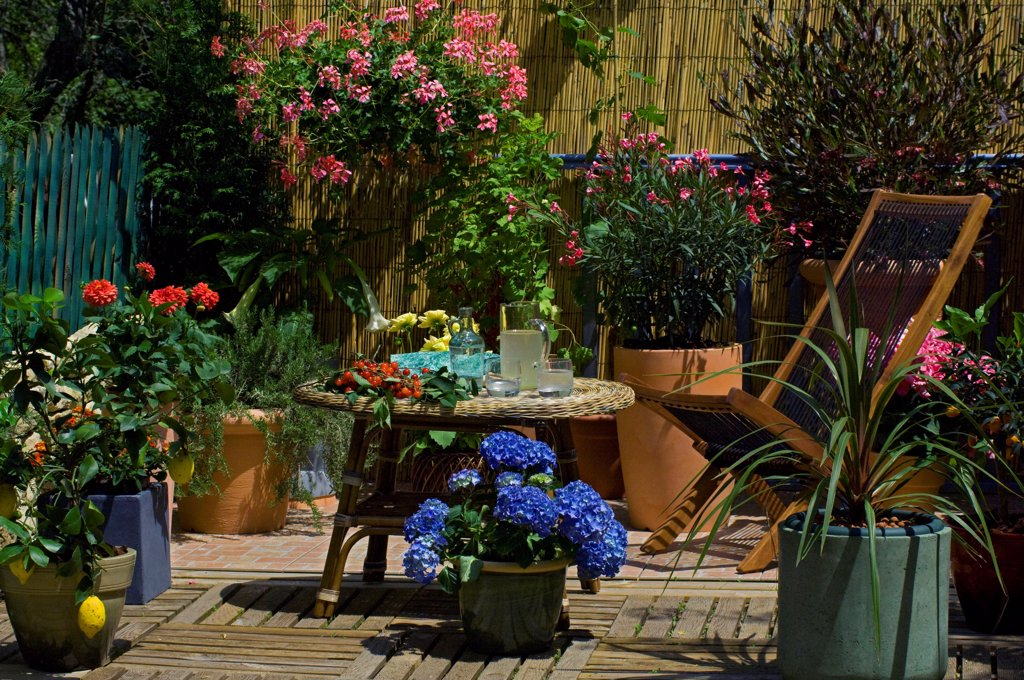 Stock Photo: 4413-31530 Flowered garden terrace