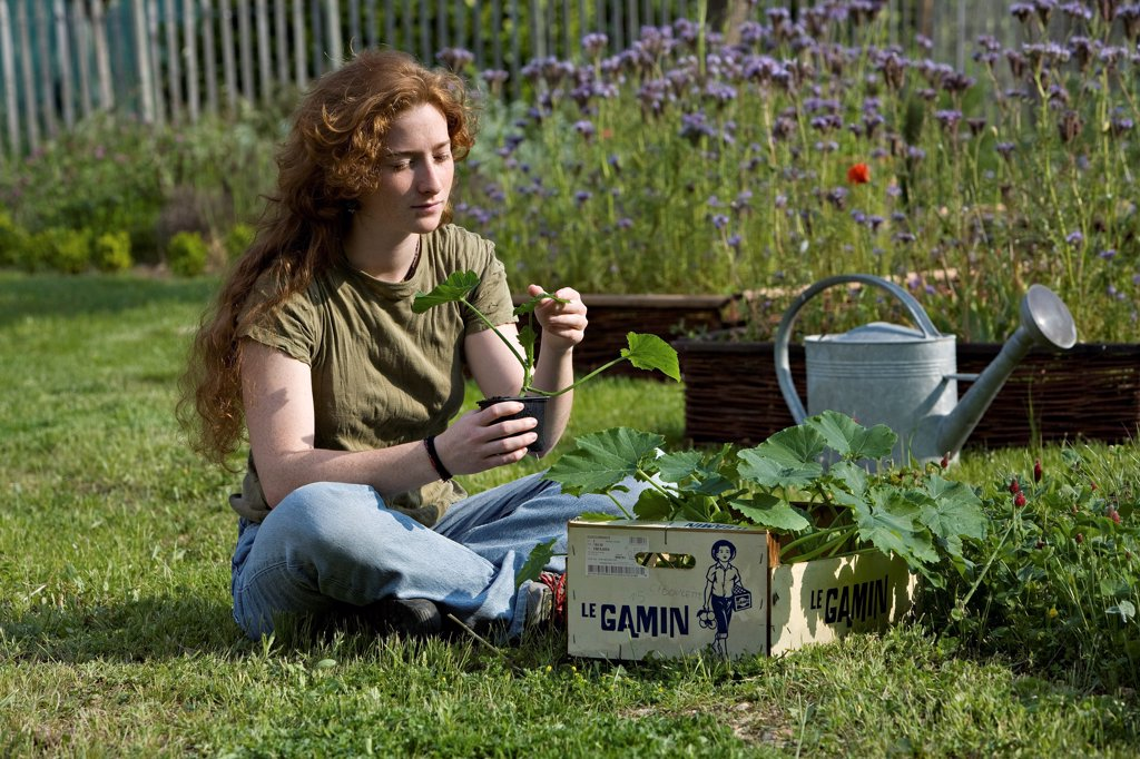 Young red-haired girl looking at a cucumber seedling : Stock Photo