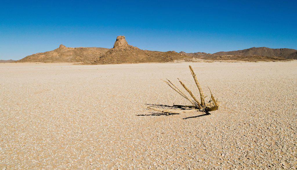 Stock Photo: 4413-5283 Desert of sand and rock cluster Tassili N'ajjer Algeria