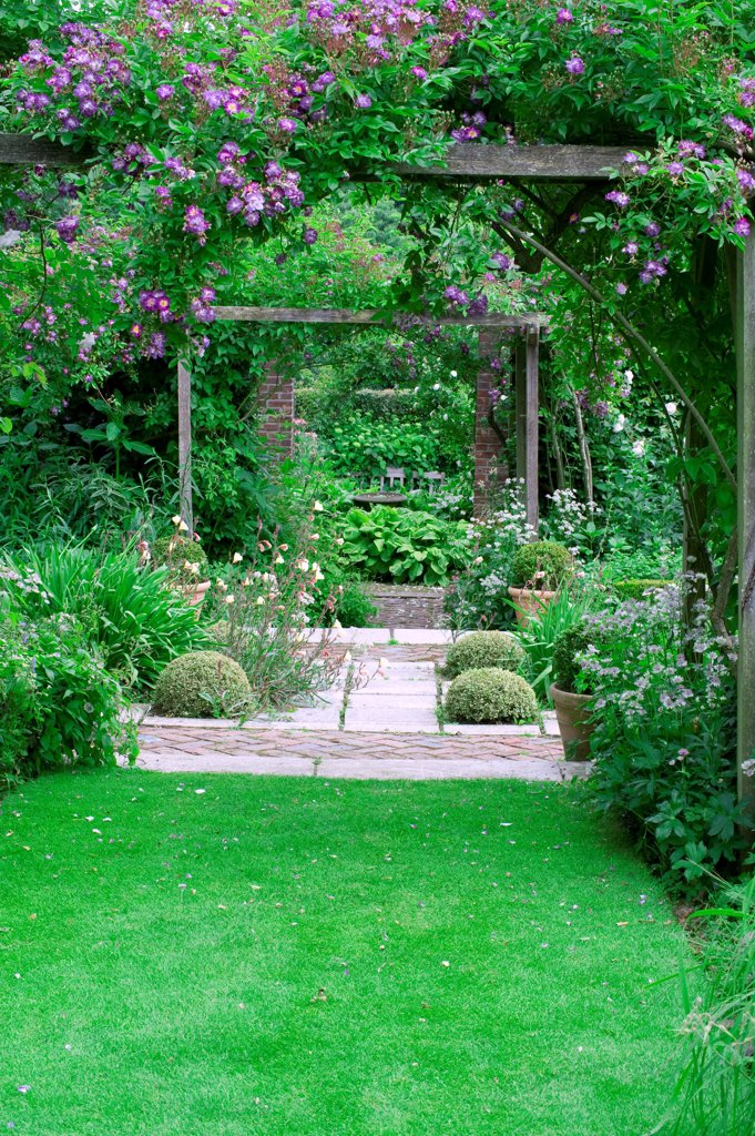 Stock Photo: 4413-63067 Perennials in bloom on a brick garden terrace with pergola