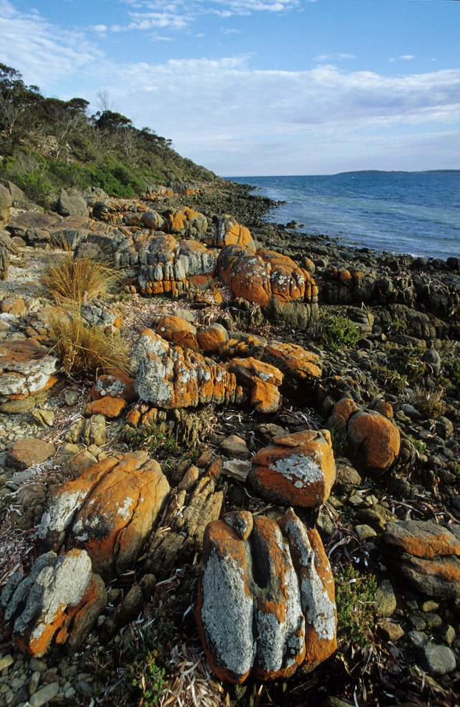 Shore of rocks Port Lincoln National Park Australia : Stock Photo
