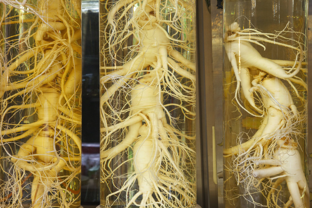 Stock Photo: 442-12360 Ginseng roots in bottles, Namdaemun Market, Seoul, South Korea