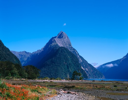 Mountain range along the sea, Milford Sound, South Island, New Zealand : Stock Photo