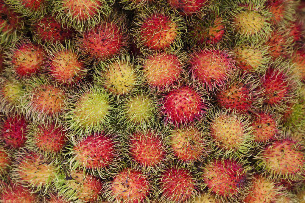 Close-up of rambutans, Siem Reap, Cambodia : Stock Photo