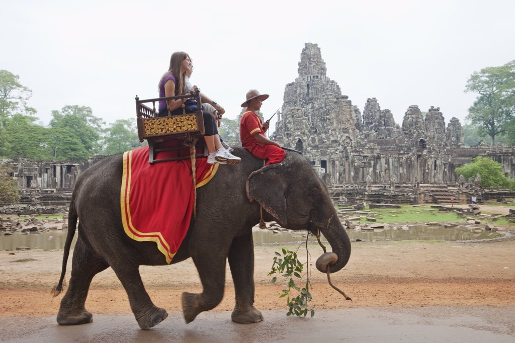 Tourists riding on an elephant, Bayon Temple, Angkor Thom, Angkor, Siem Reap, Cambodia : Stock Photo