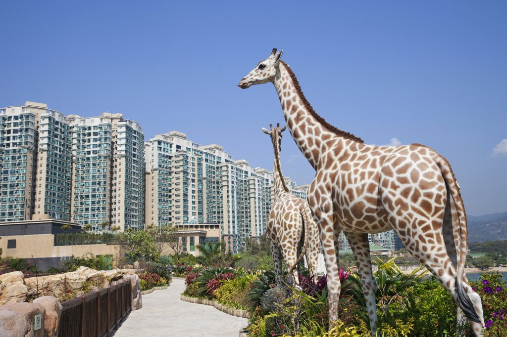 Giraffe sculptures at Noah's Ark with high rise apartments in the background, Park Island, Hong Kong, China : Stock Photo