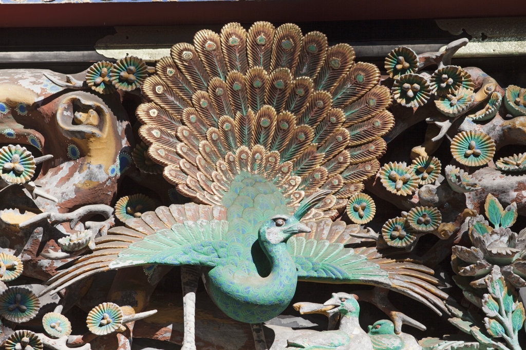 Stock Photo: 442-36681 Wooden peacock carving in a shrine, Toshu-gu Shrine, Nikko, Honshu, Japan