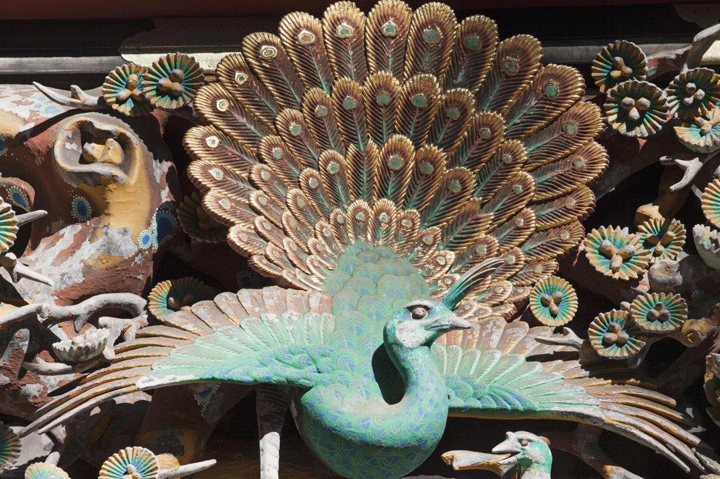 Stock Photo: 442-36682 Wooden peacock carving in a shrine, Toshu-gu Shrine, Nikko, Honshu, Japan