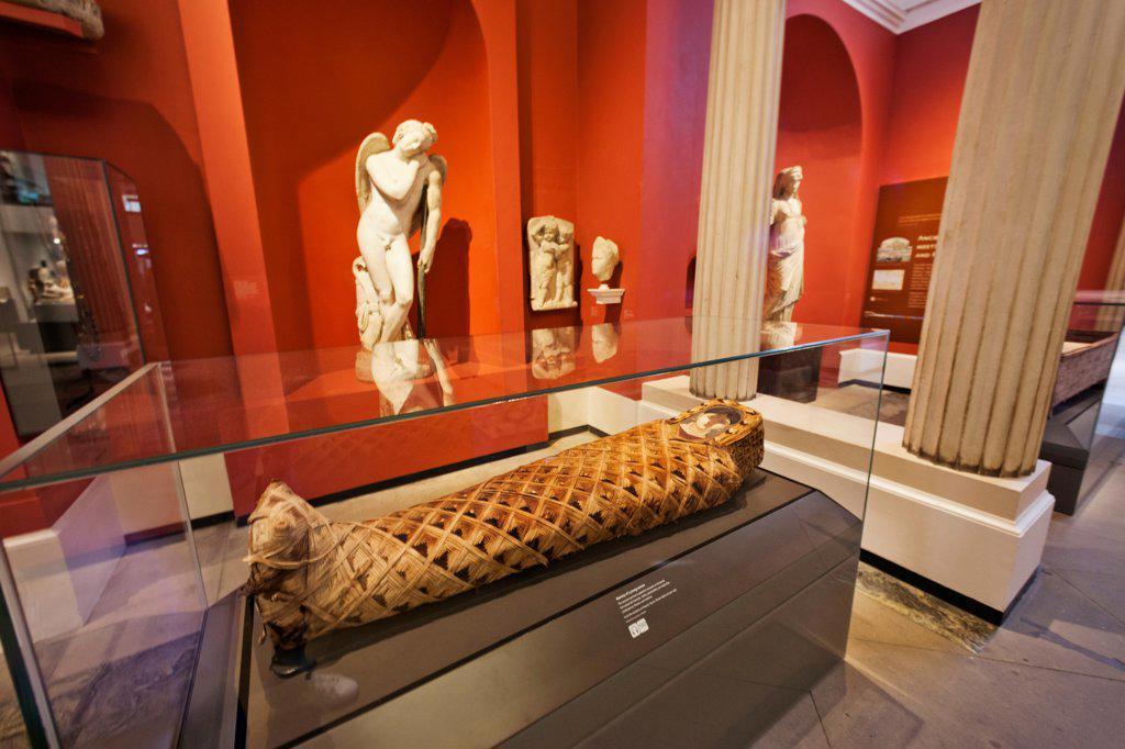 England, Oxfordshire, Oxford, Ashmolean Museum, Egyptian Mummy Exhibit : Stock Photo
