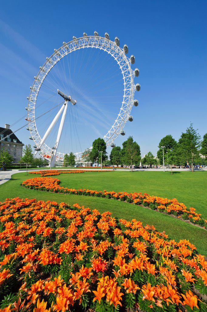 Stock Photo: 442-38327 UK, London, Jubilee Gardens, London Eye