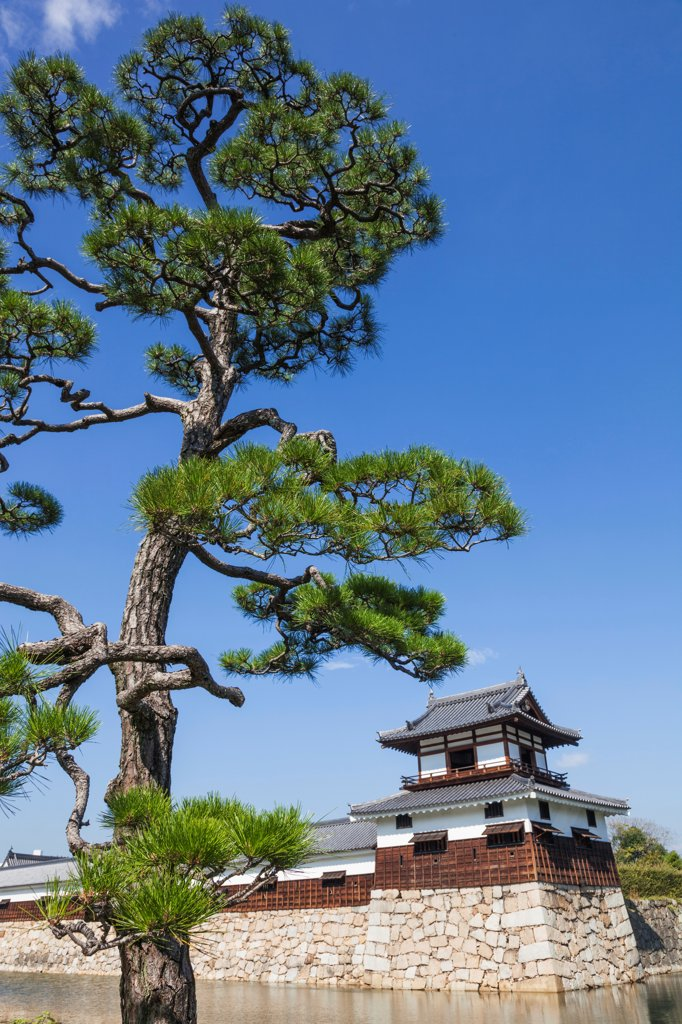 Stock Photo: 442-38949 Japan, Kyushu, Hiroshima, Hiroshima Castle, Moat and Guard Tower