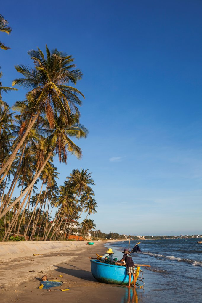 Stock Photo: 442-39056 Vietnam, Mui Ne, Mui Ne Beach, Palm Trees