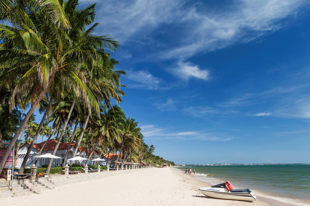 Stock Photo: 442-39058 Vietnam, Mui Ne, Mui Ne Beach, Palm Trees