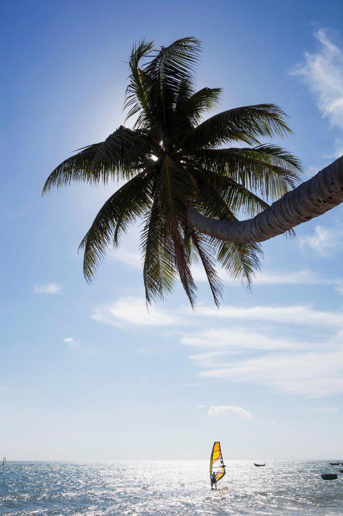 Vietnam, Mui Ne, Mui Ne Beach, Windsurfer : Stock Photo
