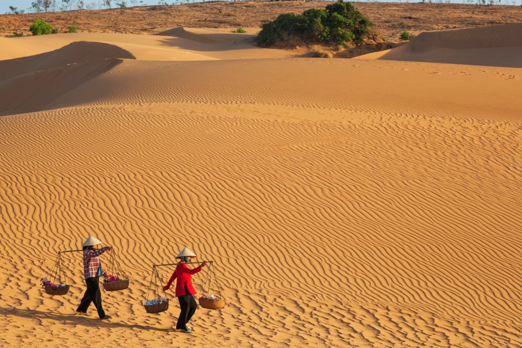 Vietnam, Mui Ne, Sand Dunes and Local Women in Conical Hats : Stock Photo