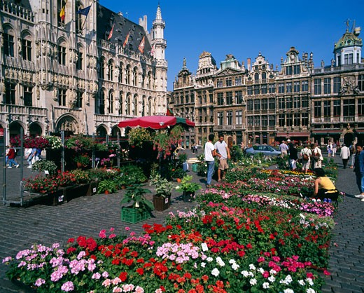 Stock Photo: 442-4893A Tourists at a flower market, Grand Place, Brussels, Belgium