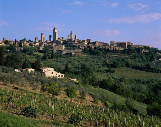 Stock Photo: 442-5433C San Gimignano