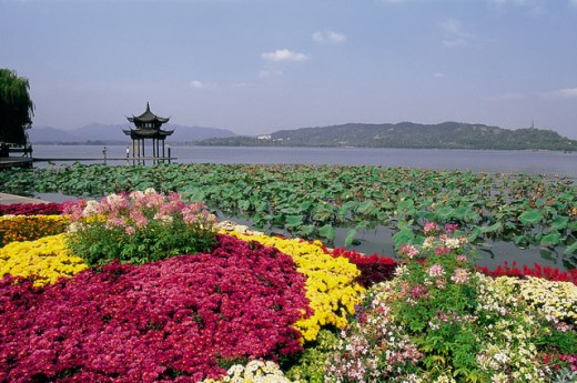 Stock Photo: 442-5610 West Lake covered with flowers, Hangzhou, China