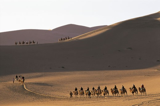 Stock Photo: 442-5674 Camel train in the desert, Mount Mingshan, Dunhuang, China