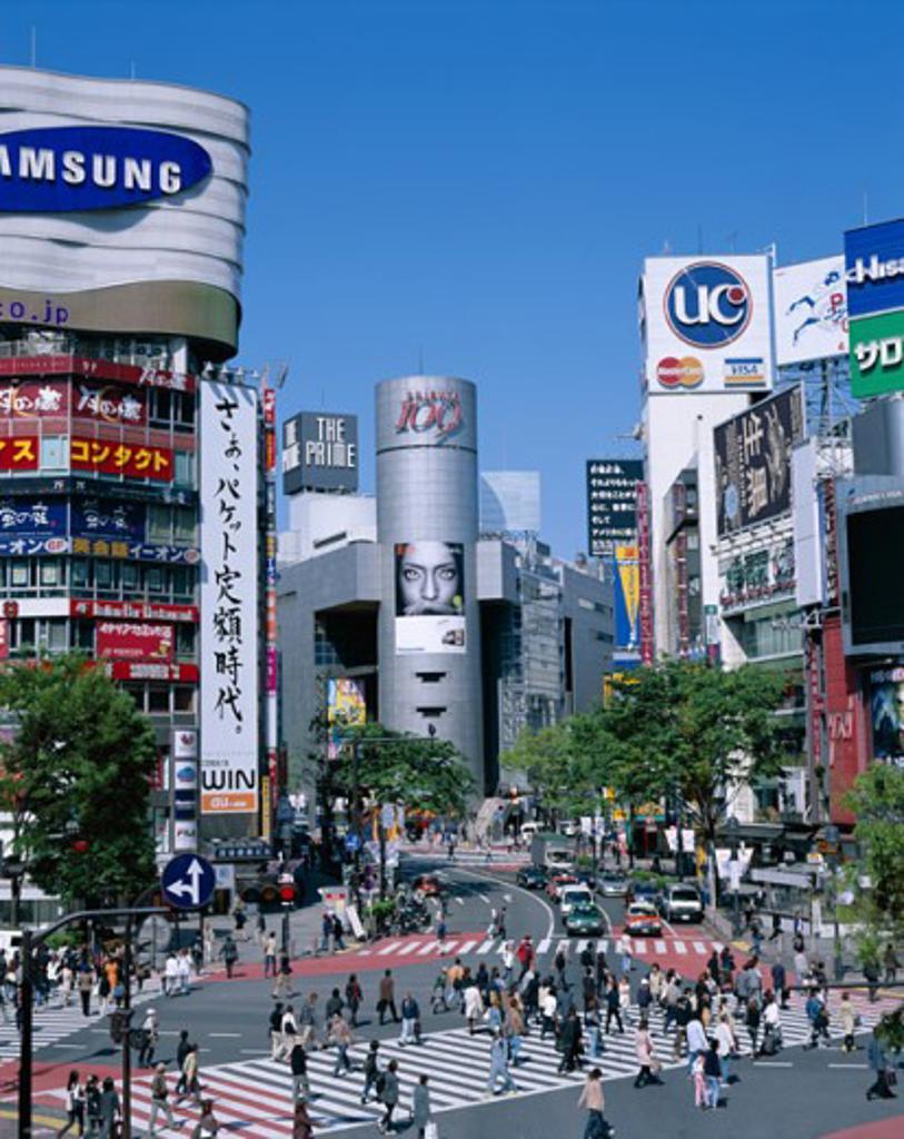 Stock Photo: 442-6638 High angle view of people walking at a crosswalk, Shibuya, Tokyo, Honshu, Japan