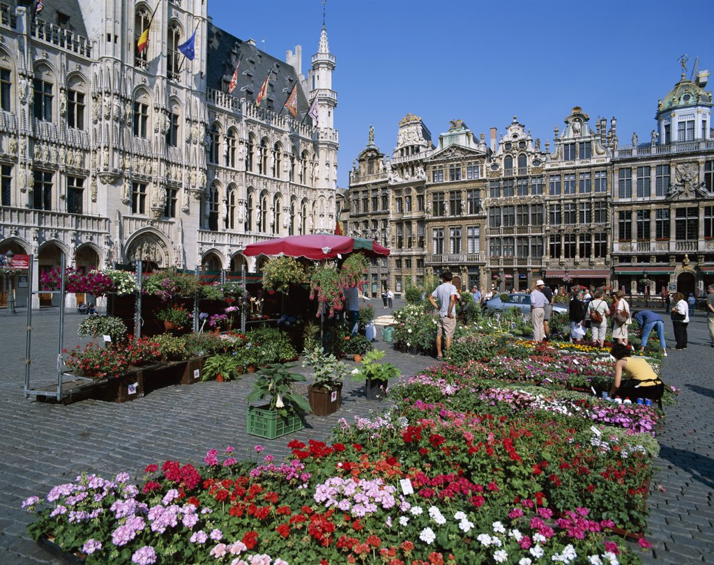 People at a flower market, Grand Place, Brussels, Belgium : Stock Photo