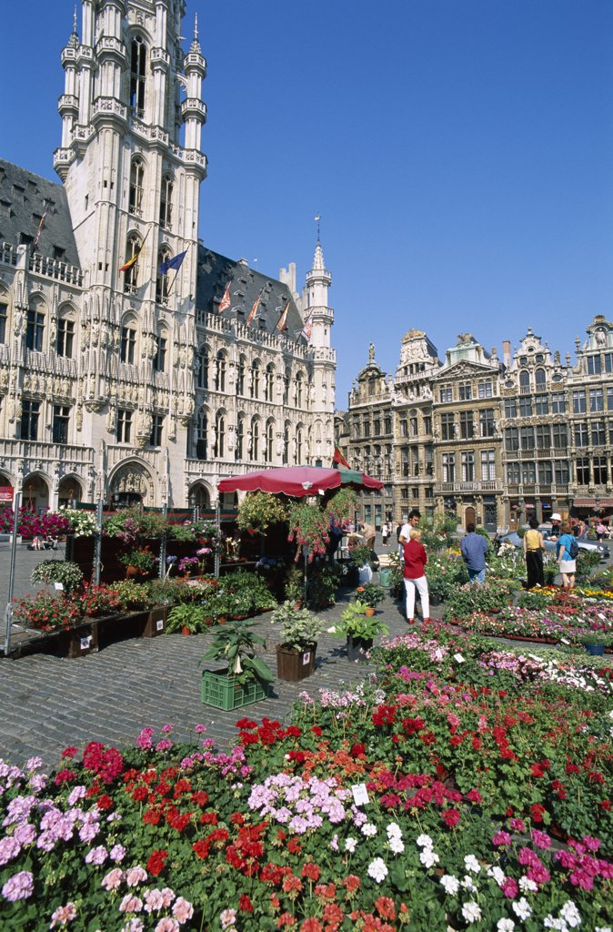 Group of people at a flower market, Grand Place, Brussels, Belgium : Stock Photo