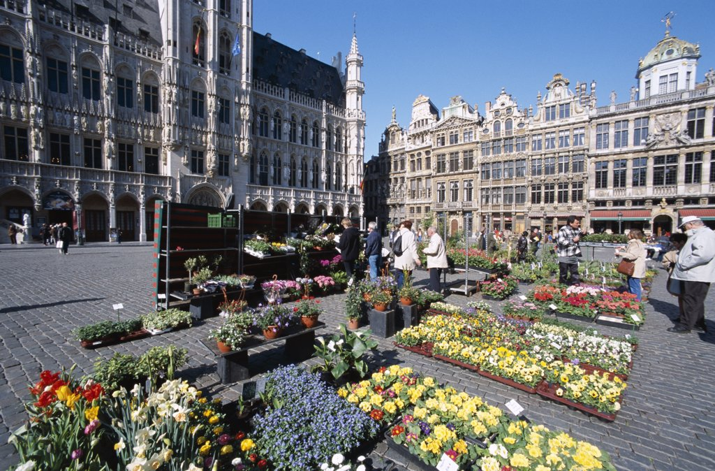 Stock Photo: 442-8837 People at a flower market, Grand Place, Brussels, Belgium
