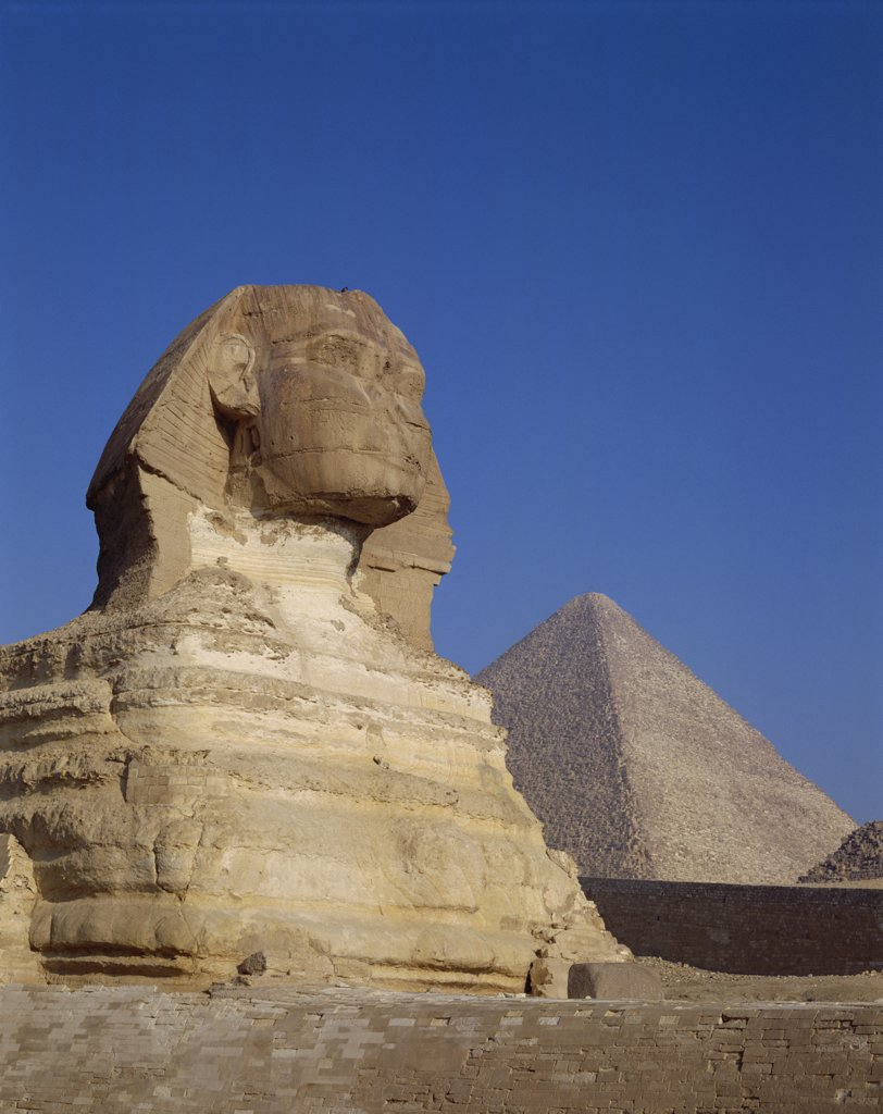 Stock Photo: 442-8981 Low angle view a sphinx, Great Sphinx, Giza, Egypt