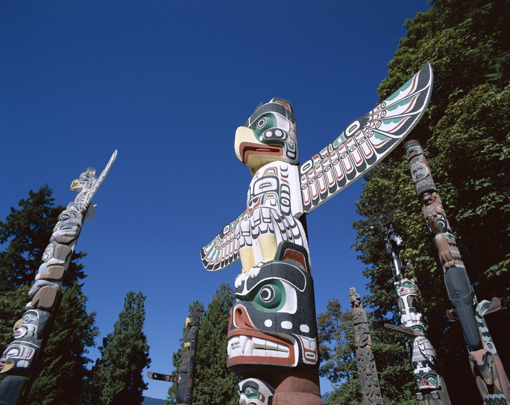 Low angle view of totem poles, Stanley Park, Vancouver, British Columbia, Canada : Stock Photo
