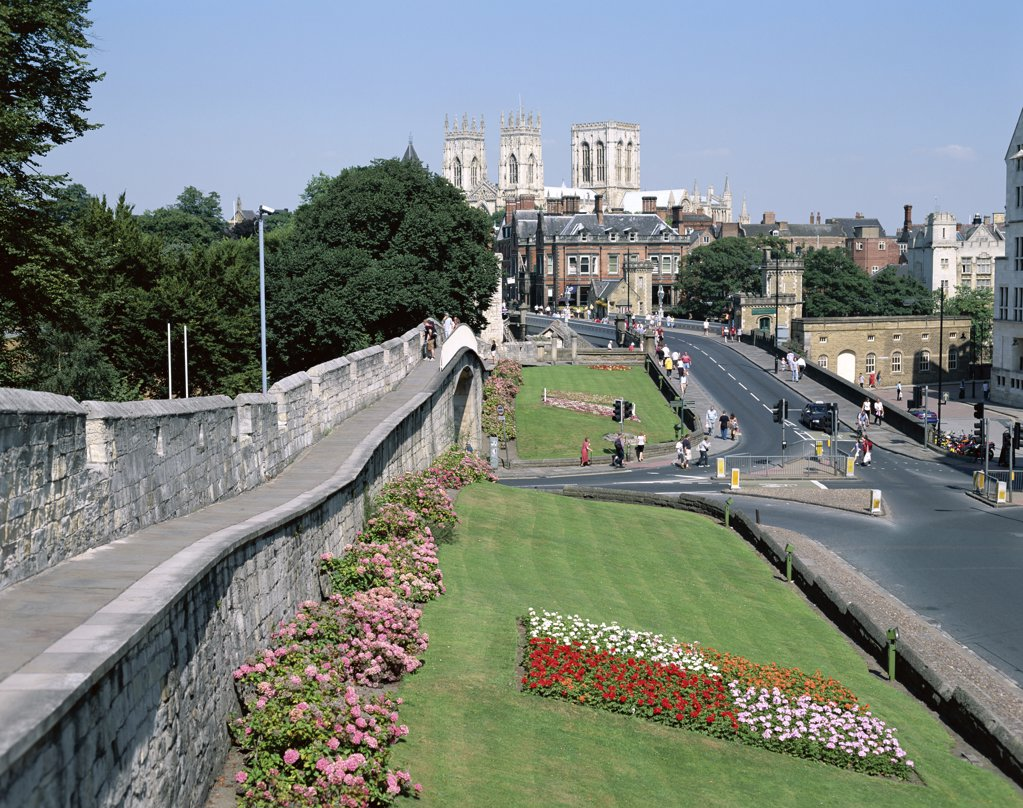 High angle view of gardens at the side of a road, York Minster Cathedral, York, North Yorkshire, England : Stock Photo