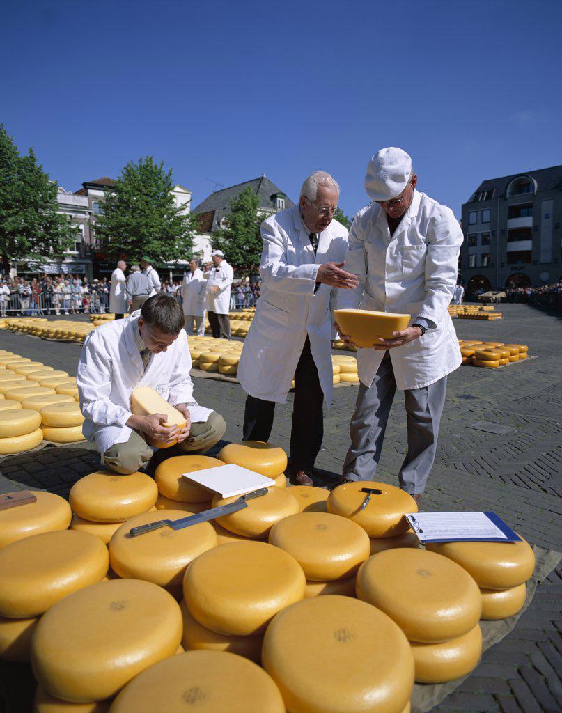 Stock Photo: 442-W9687 Cheese Buyers, Cheese Market, Alkmaar, Netherlands