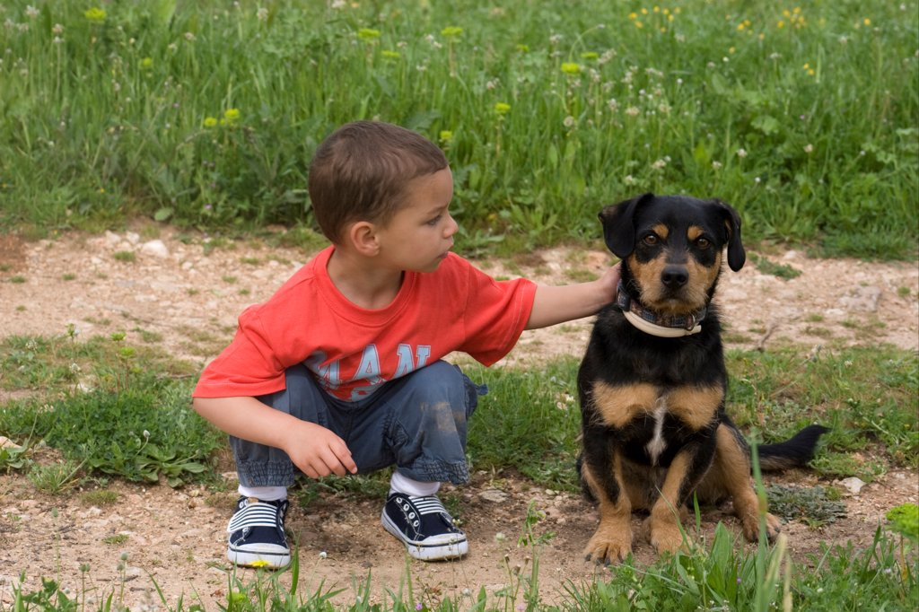 Stock Photo: 4421-17292 Domestic Dog, mongrel, adult female, with toddler stroking neck, Spain, april